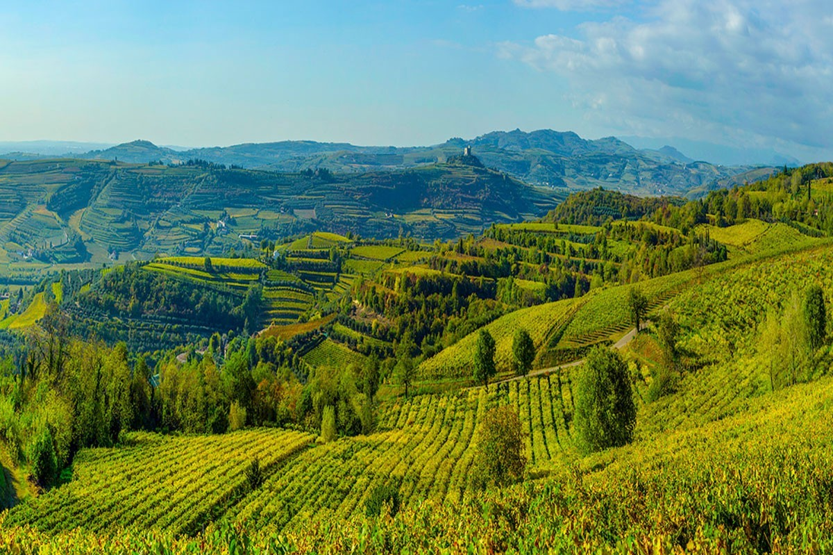 BEST OF Soave