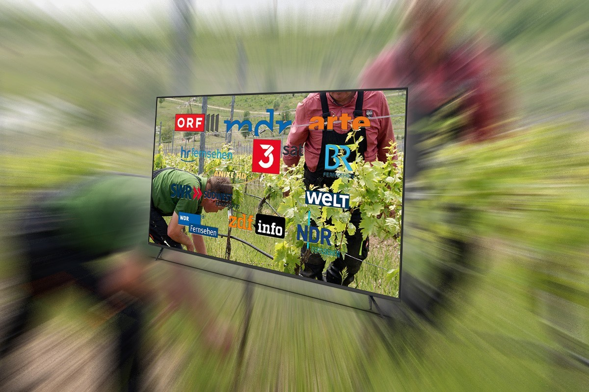 Das Weinfernsehprogramm Wein Plus Wein Magazin